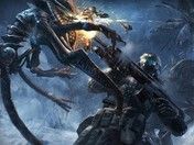 Crysis 2 Patch v1.1